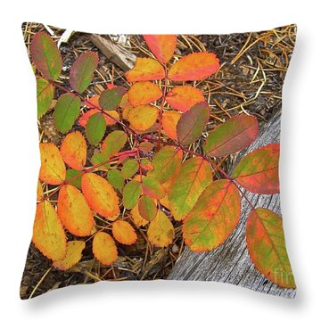 Throw Pillow featuring the painting New And Old Life Cycles by Alan Johnson