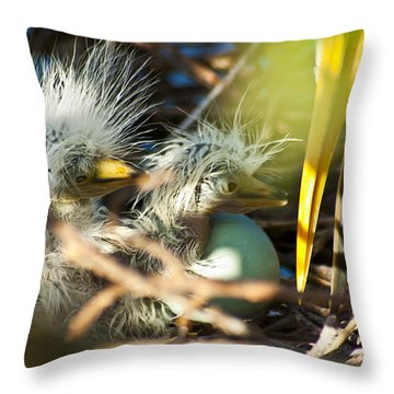 New Arrivals Throw Pillow