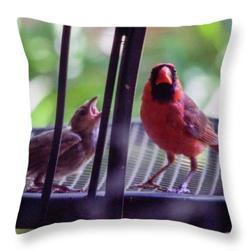 New Baby Cardinal Throw Pillow