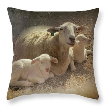 New Baby Lambs Throw Pillow by Lena Wilhite