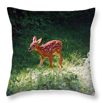 New Backyard Visitor Throw Pillow