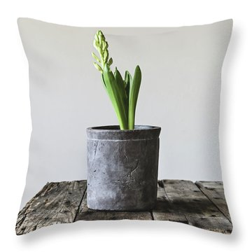 Throw Pillow featuring the photograph New Beginings by Kim Hojnacki