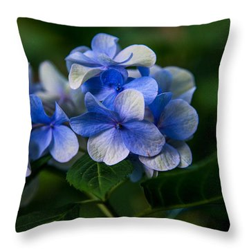 Throw Pillow featuring the photograph New Blues  by John Harding