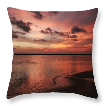 New Brazos Throw Pillow