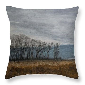 New Buffalo Marsh Throw Pillow by John Hansen
