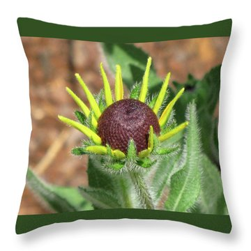 New Daisy Throw Pillow by Michele Wilson