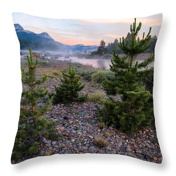New Day Throw Pillow