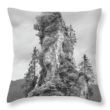 New Eddystone Rock Throw Pillow