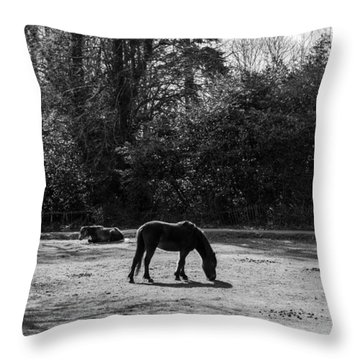 New Forest Silhouette Throw Pillow