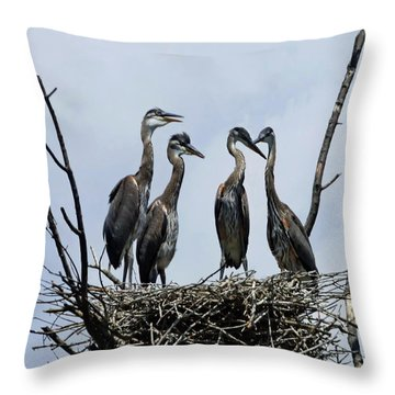 New Generation Throw Pillow