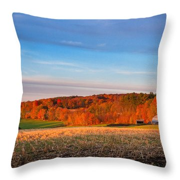 New Hampshire Country Throw Pillow