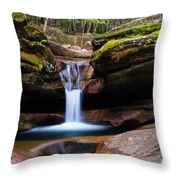 New Hampshire Sabbaday Falls And Fall Foliage Panorama Throw Pillow by Ranjay Mitra