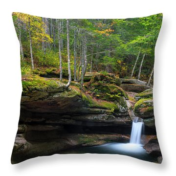 New Hampshire Sabbaday Falls Panorama Throw Pillow by Ranjay Mitra