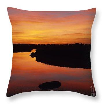 New Hampshire Salt Marsh At Sunrise Throw Pillow by Erin Paul Donovan