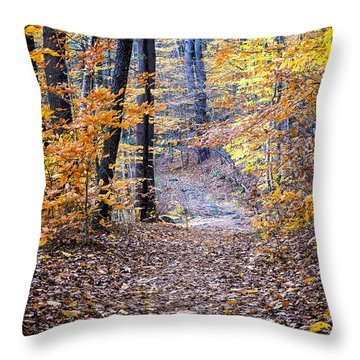 New Hampshire Woods Throw Pillow