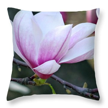 New Life 2 Throw Pillow by Mikki Cucuzzo