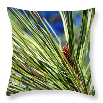 Throw Pillow featuring the photograph New Life by Betty Northcutt