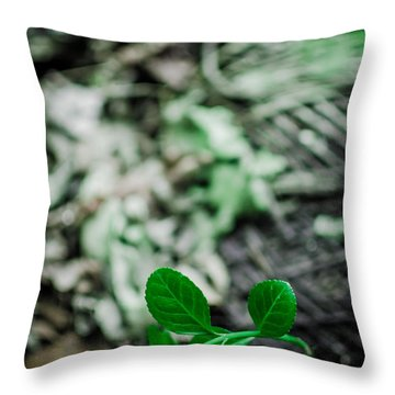 New Life From Ruins  Throw Pillow by Off The Beaten Path Photography - Andrew Alexander