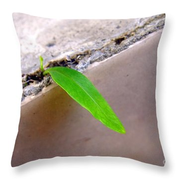 New Life Throw Pillow by Yali Shi