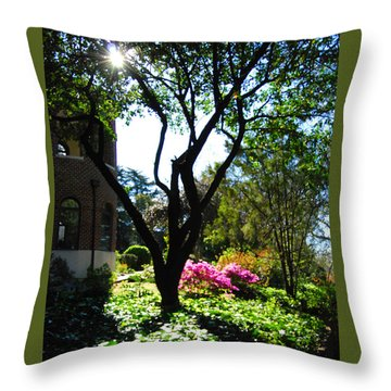 New Mercies Throw Pillow by Linda Mesibov