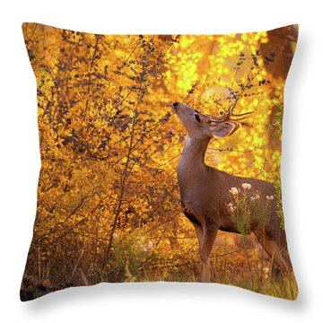 New Mexico Buck Browsing Throw Pillow