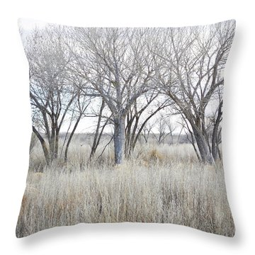 Throw Pillow featuring the photograph New Mexico Desert Tree Field by Andrea Hazel Ihlefeld