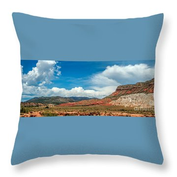 New Mexico Throw Pillow by Gina Savage