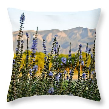 Throw Pillow featuring the photograph Santa Ana Beauty by Gina Savage