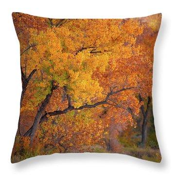 New Mexico Gold Throw Pillow