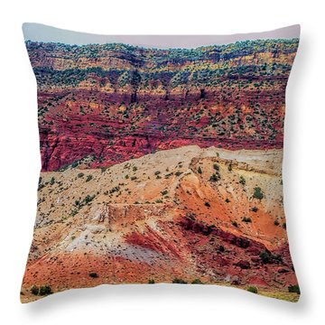 New Mexico Hillside Throw Pillow by Gina Savage