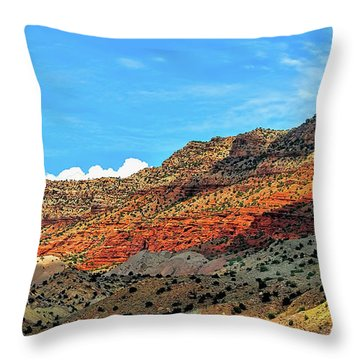 New Mexico Landscape Throw Pillow by Gina Savage