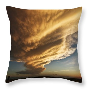 New Mexico Structure Throw Pillow