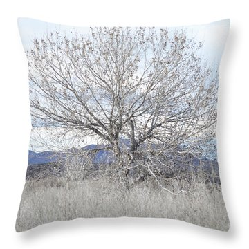 Throw Pillow featuring the photograph New Mexico Tree Mountain Landscape by Andrea Hazel Ihlefeld