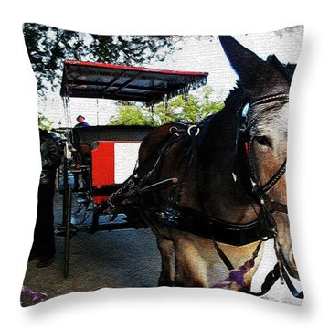 New Orleans Carriage Ride Throw Pillow by Joan  Minchak