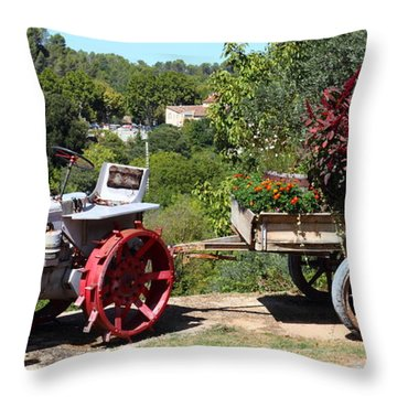Throw Pillow featuring the photograph New Pastures by Richard Patmore