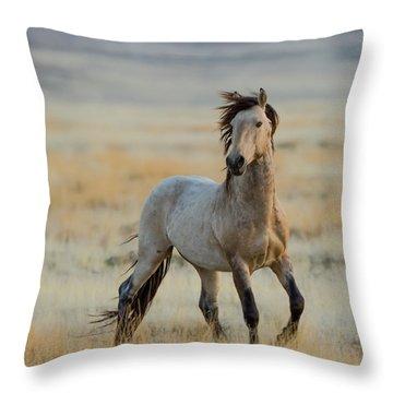 New Stallion Throw Pillow