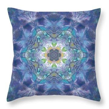 New World Dream Catcher Throw Pillow by Maria Watt