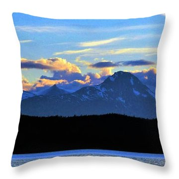 New World Throw Pillow by Martin Cline