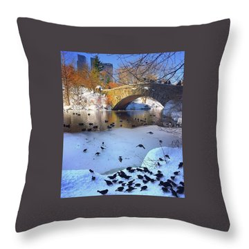 New York In The Winter Throw Pillow