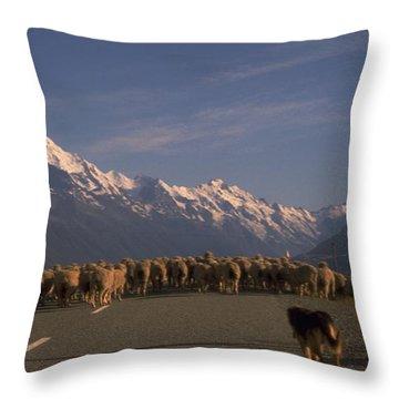 New Zealand Mt Cook Throw Pillow