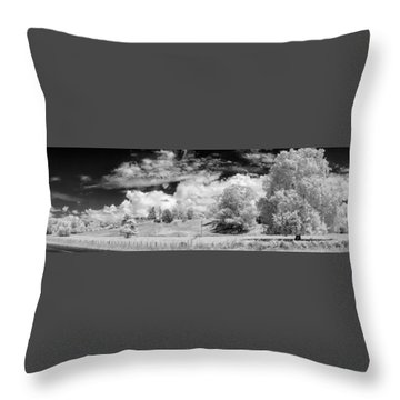 New Zealand Panorama Throw Pillow