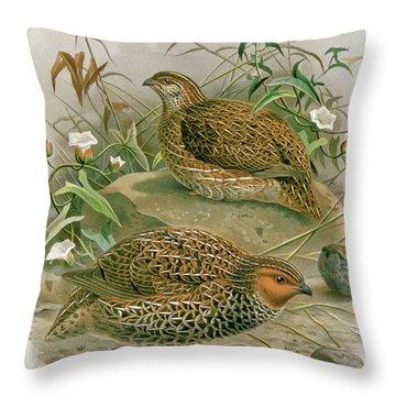 New Zealand Quail Throw Pillow