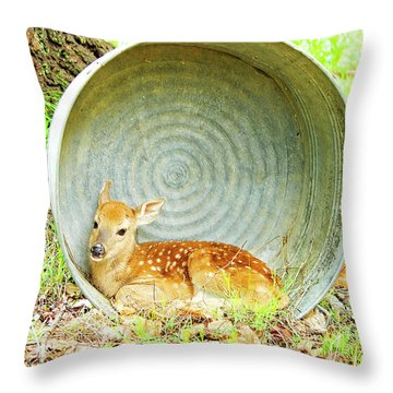 Newborn Fawn Finds Shelter In An Old Washtub Throw Pillow by A Gurmankin