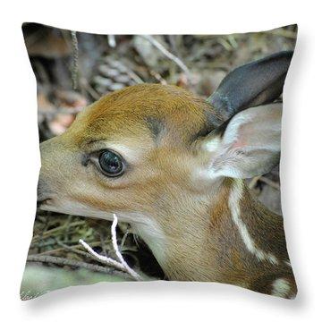 Newborn Fawn Throw Pillow