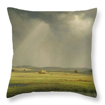 Newburyport Meadows Throw Pillow by Martin Heade