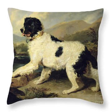 Newfoundland Dog Called Lion Throw Pillow by Sir Edwin Landseer