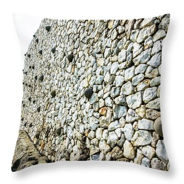 Newgrange Throw Pillow