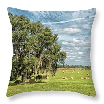 Newly Baled Hay Throw Pillow