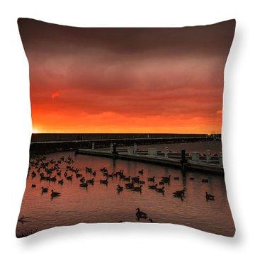 Newport Geese Throw Pillow