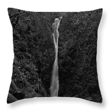 Throw Pillow featuring the photograph Niagara Falls, British Columbia by Cendrine Marrouat